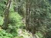 stollenbacher004
